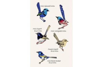 Australian Blue Wrens Tea Towel
