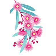 Australian Flowering Gum Tea Towel